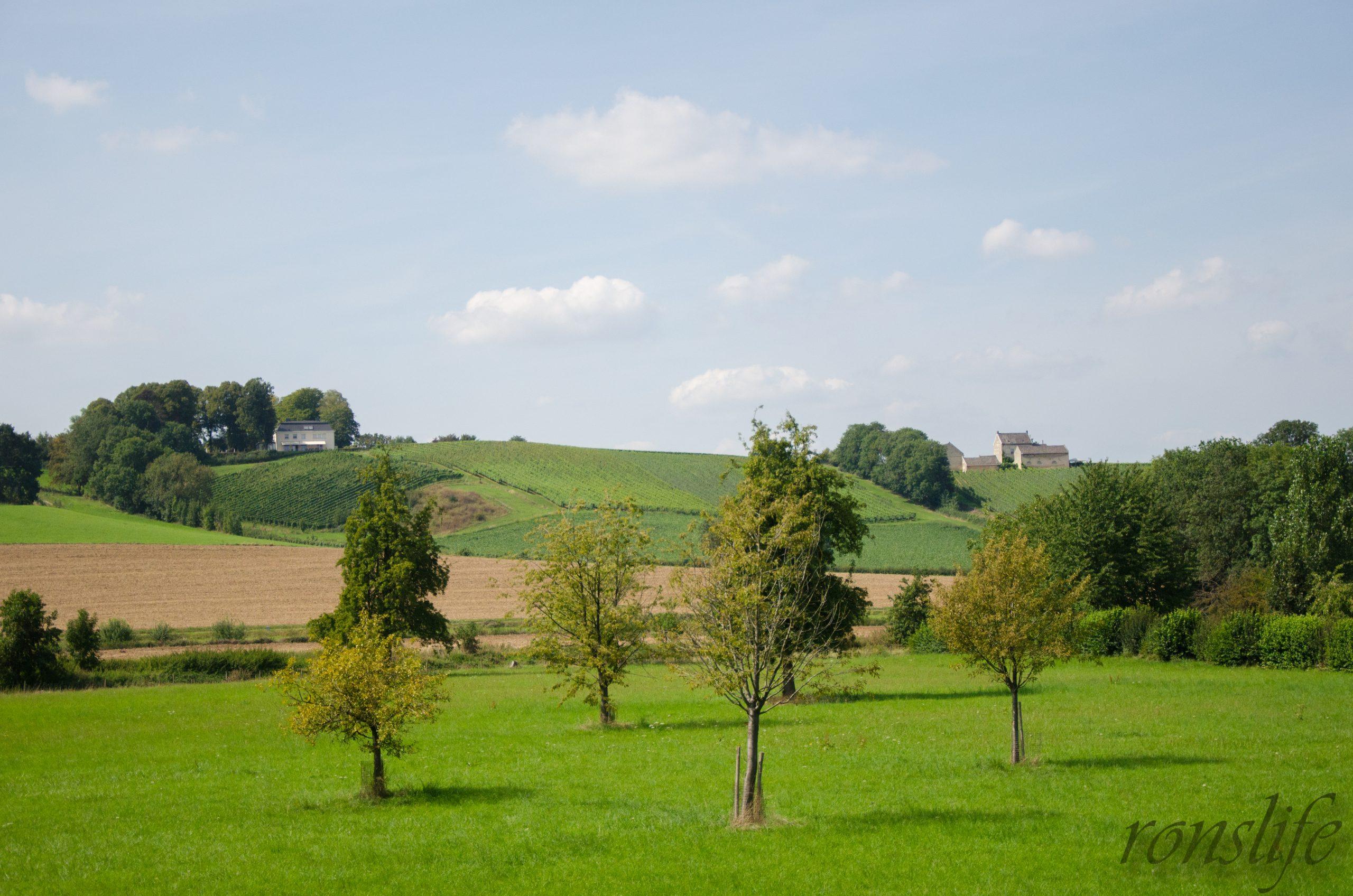 Het glooiende landschap van Limburg bij Maastricht
